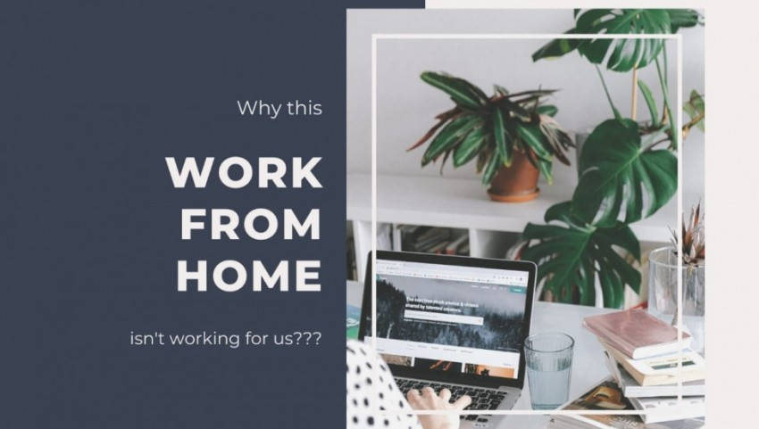 Why this Work from Home isn't working for us?